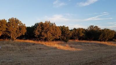 Graford Residential Lots & Land For Sale: Lt 585 Canyon Wren Loop