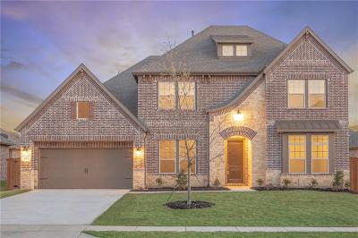 Prosper Single Family Home For Sale: 241 Lake Trail