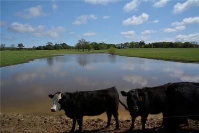 Young County Farm & Ranch For Sale: 10613 380 Highway