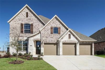 Prosper Single Family Home For Sale: 2880 Clearwater Drive