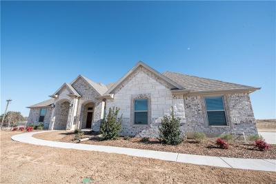 Weatherford Single Family Home For Sale: 100 Hicks Lane