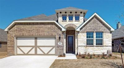 Denton Single Family Home For Sale: 6108 Meandering Creek Drive