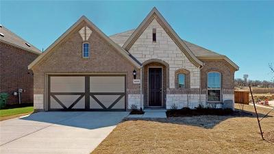 Denton Single Family Home For Sale: 6609 Meandering Creek Drive