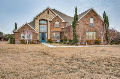 Azle Single Family Home For Sale: 163 Rattling Antler Court