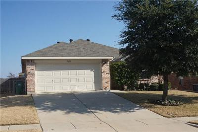 Denton County Single Family Home For Sale: 3604 Northpointe Drive