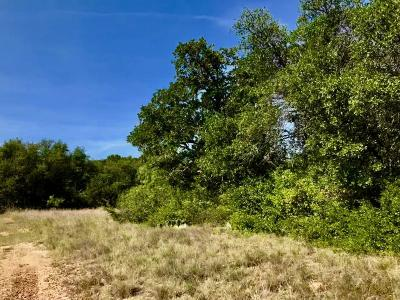 Cisco Residential Lots & Land For Sale: 1193 N Shore Dr