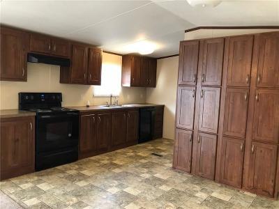 Denison Single Family Home For Sale: 208 S Center Street