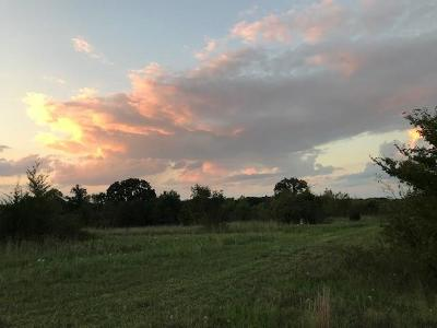 Wills Point Farm & Ranch For Sale: Tbd Vz County Road 3703