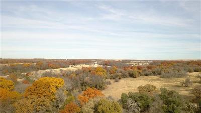 Decatur Farm & Ranch For Sale: County Rd 4460