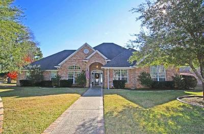 Tyler Single Family Home For Sale: 3721 Winding Way