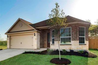 Denton Single Family Home For Sale: 917 Summer Stream Road