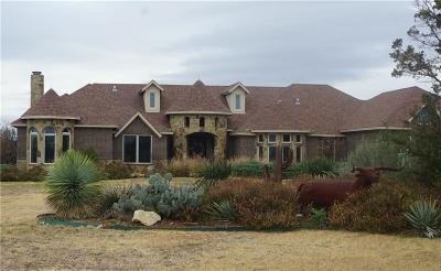 Single Family Home For Sale: 469 Frog Branch Court