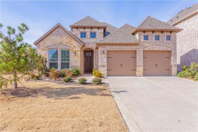 McKinney Single Family Home For Sale: 3701 Buckeye Drive