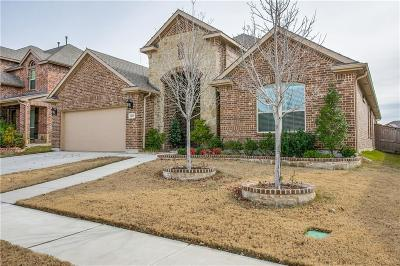 Fort Worth Single Family Home For Sale: 6837 San Fernando Drive