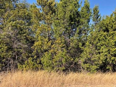 Hood County Residential Lots & Land For Sale: 926 Indian Drive