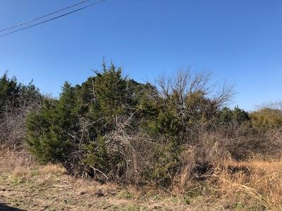 Hood County Residential Lots & Land For Sale: 810 Ports O Call Drive