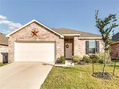 Little Elm Single Family Home For Sale: 1413 Lone Pine