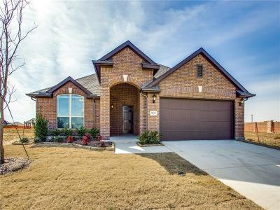 Collin County Single Family Home For Sale: 909 Edinburgh Drive