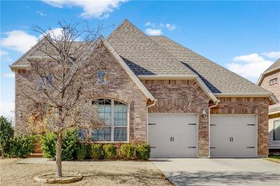 Plano Single Family Home For Sale: 8709 Argentine Way