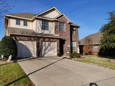 Plano Single Family Home For Sale: 9753 Fandango Lane