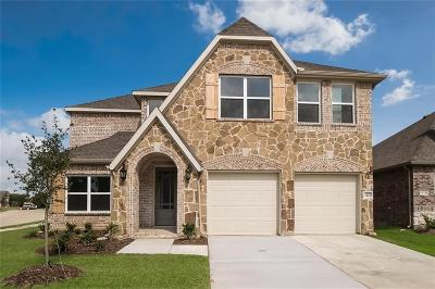 Little Elm Single Family Home For Sale: 1420 Frisco Hills Boulevard