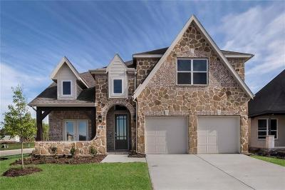 Little Elm Single Family Home For Sale: 1224 Nannyberry Drive