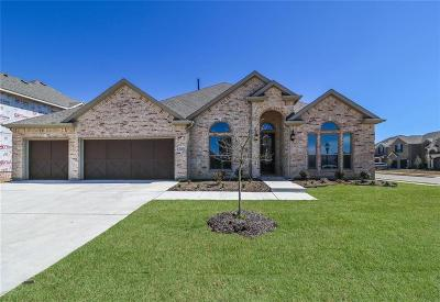 Little Elm Single Family Home For Sale: 1451 Benavites Drive