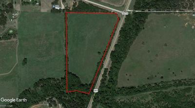 Mineral Wells Farm & Ranch For Sale: Us 281 Highway