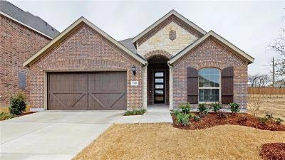 Denton County Single Family Home For Sale: 2420 Valley Lane