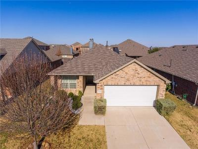 McKinney Single Family Home For Sale: 9616 Sleepy Hollow Drive