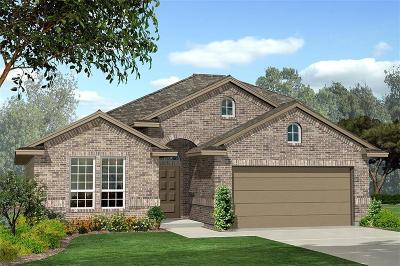 Fort Worth Single Family Home For Sale: 9304 Flying Eagle Lane