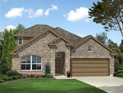 Fort Worth Single Family Home For Sale: 9360 Flying Eagle Lane