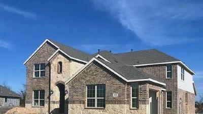 Rockwall Single Family Home For Sale: 3205 Pecos Lane