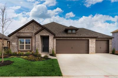 Little Elm Single Family Home For Sale: 1721 Angus Drive