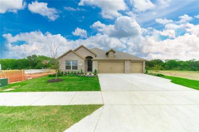 Little Elm Single Family Home For Sale: 2009 Angus Drive