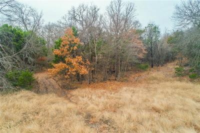 Hood County Residential Lots & Land For Sale: 417 Acorn Trail