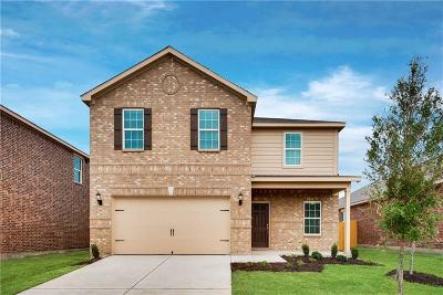 Collin County Single Family Home For Sale: 3117 Elam Street