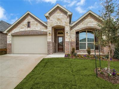 Fort Worth Single Family Home For Sale: 9129 Flying Eagle Lane