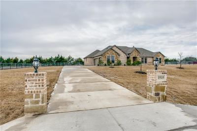 Collin County Single Family Home For Sale: 1515 Canales Trail