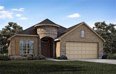 Fort Worth Single Family Home For Sale: 6337 Red Cliff Drive