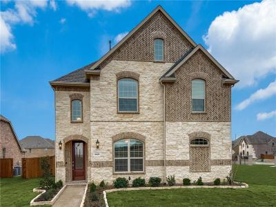 Denton County Single Family Home For Sale: 3439 Salvador Lane