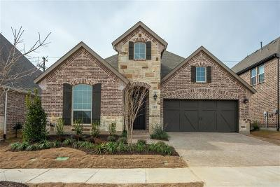 Denton County Single Family Home For Sale: 4541 Tall Knight Lane