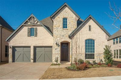 Denton County Single Family Home For Sale: 4553 Tall Knight Lane