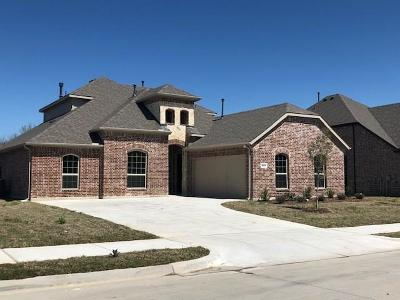 Rockwall Single Family Home For Sale: 1003 Windham Drive