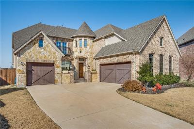 Denton County Single Family Home For Sale: 2506 Berry Brook Lane