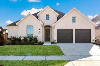 Denton County Single Family Home For Sale: 3911 Prairie Clover Lane