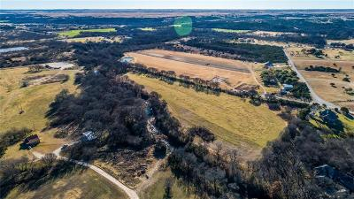 Fort Worth Farm & Ranch For Sale: Highway 377