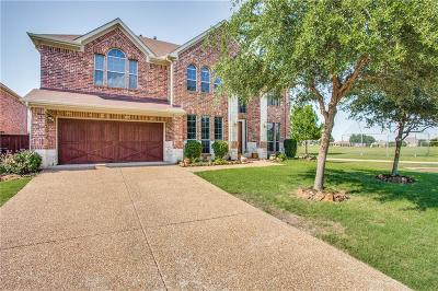 Collin County Single Family Home For Sale: 10028 Promontory Drive