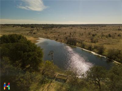 Brown County Farm & Ranch For Sale: 00 Fm 586