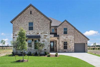 Prosper Single Family Home For Sale: 3021 Renmuir Drive